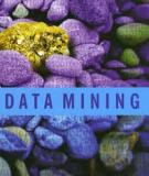 Oracle Data Mining Application Developer's Guide